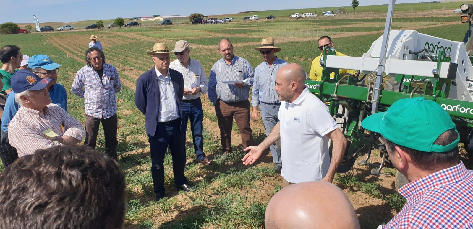 Jornada de Campo sobre el cultivo de legumbres ecológicas